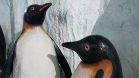 Pingvinbakgrund Fotografering för Bildbyråer