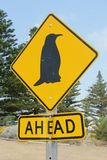 Pingvinkorsning Royaltyfri Bild
