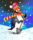 pingvinpercy Arkivfoton