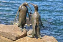 Pingvinscuptures på stranden - Hobart arkivbild