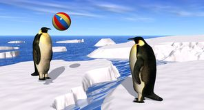 pingwinów bawić się Zdjęcia Stock
