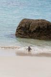 Pingwin chodzi morze przy głazami Wyrzucać na brzeg, Południowa Afryka Fotografia Stock