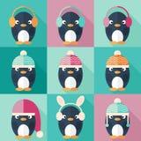 Pingwin ikony ustawiać w płaskim projekcie Zdjęcia Stock