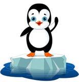 Pingwin na lodzie ilustracja wektor