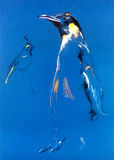 Pingwinu nakreślenie Obrazy Royalty Free