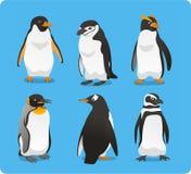 Pingwinu set Zdjęcia Stock