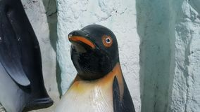 Pingwinu tło Obrazy Stock