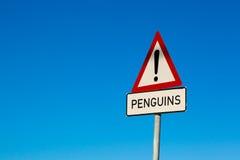 Pingwinu znak z niebieskim niebem w tle afryce kanonkop słynnych góry do południowego malowniczego winnicę wiosna Zdjęcia Royalty Free