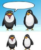 pingwiny dwa Zdjęcie Royalty Free