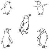 pingwiny nakreślenie ręką tła rysunku ołówka drzewny biel Zdjęcie Royalty Free