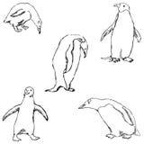 pingwiny nakreślenie ręką tła rysunku ołówka drzewny biel Fotografia Stock