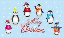Pingwiny w ciepłym odziewają, Bożenarodzeniowy pingwin Fotografia Stock