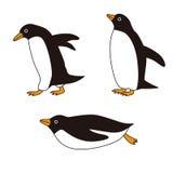 Pingwiny z różnymi pozami Zdjęcia Stock