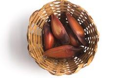 Pinhao - brazilian pine into a basket Stock Images