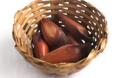 Pinhao - brazilian pine into a basket Royalty Free Stock Photos
