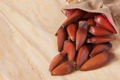 Pinhao - brazylijska sosna od parcianej torby na drewnianym stole Fotografia Royalty Free