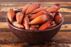 Pinhao - brazylijska sosna w brown pucharze na drewnianym stole Zdjęcia Stock