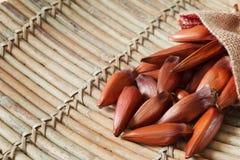 Pinhao - brazylijska sosna w parcianej torbie na drewnianej desce z co Fotografia Royalty Free