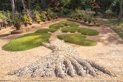 Pinheiro em pasta para a decoração do jardim, beleza ajardinando do jardim Fotografia de Stock Royalty Free