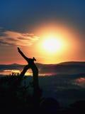 Pinheiro selvagem dos bonsais no penhasco rochoso do arenito Estância turística Imagem de Stock