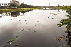 Pinheiros河的污染在圣保罗 免版税库存照片