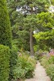 Pinheiros, flores do jardim da casa de campo, trajeto de pedra Fotografia de Stock