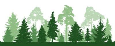 Pinho das árvores, abeto, abeto vermelho, árvore de Natal Floresta conífera, silhueta do vetor ilustração royalty free