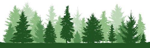 Pinho das árvores, abeto, abeto vermelho, árvore de Natal Floresta conífera, silhueta do vetor