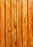 Pinho de madeira Foto de Stock Royalty Free