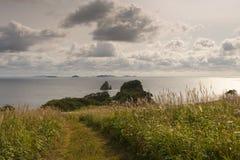 Pinho do cabo, baía de Gorshkov no mar do ‹Japão do †do ‹do †Rússia Foto de Stock Royalty Free