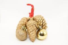 Pinho dourado dos cones com bolas Imagem de Stock