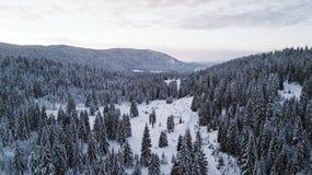 Pinhos cobertos de neve sobre a montanha, fotografada do ar fotografia de stock royalty free