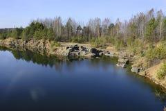 Pinhos no banco da lagoa Imagens de Stock Royalty Free