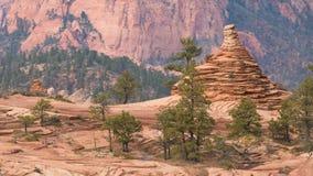 Pini e menagrami di Pinyon nell'Utah del sud fotografia stock