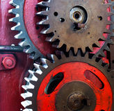 Pinion gear for mechanical machine Stock Photo