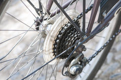 Pinion of the rear wheel Stock Image