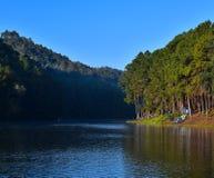 Pinjeskog och blå himmel med reflexion i sjön Royaltyfria Bilder