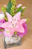 Pink лилия Стоковое Изображение RF