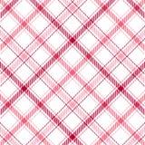 pink нашивки шотландки Стоковая Фотография