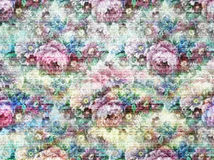 Pink нежность Стоковое Изображение