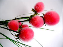 Pink. Fake flowers royalty free stock images