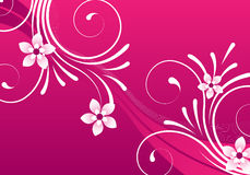 Pink abstract floral design Royalty Free Stock Photo