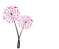 Pink abstract heart dandelion vector background Stock Photos