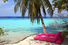 The pink air bed. A pink air bed on the marvellous sandy beach of the Maldives Royalty Free Stock Images
