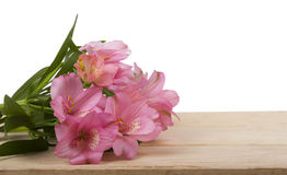 Pink Alstroemeria and gift box on white background Royalty Free Stock Image