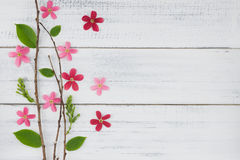 Free Pink And Red Flowers With Branch And Green Leaves Stock Photos - 90723973