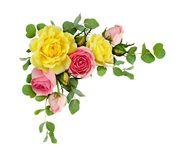 Free Pink And Yellow Rose Flowers With Eucalyptus Leaves Stock Image - 110765291
