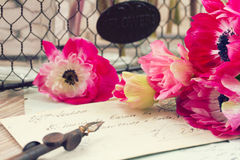 Pink anemone flowers  with old retro golden quill Stock Photography