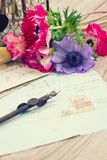 Pink anemone flowers  with old retro  quill pen Stock Image