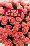 Pink Anna Karina roses Royalty Free Stock Photography